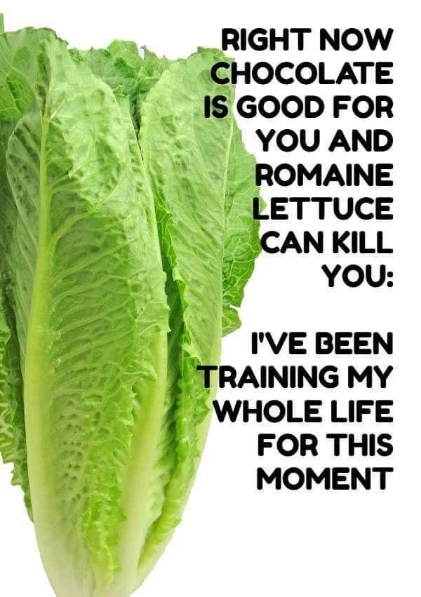 lettuce recall meme
