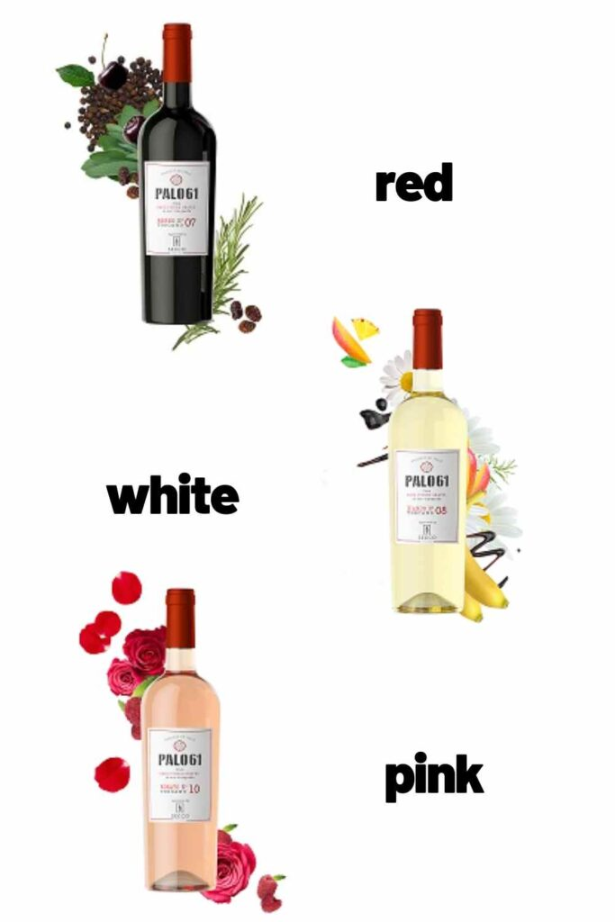palo-61-low-carb-wines-683x1024