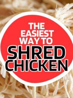 chicken shredder easy