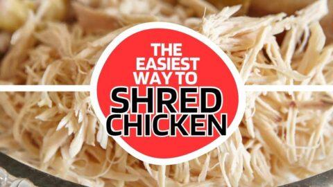 chicken-shredder-easy-480x270