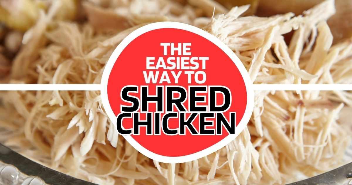 chicken-shredder-easy